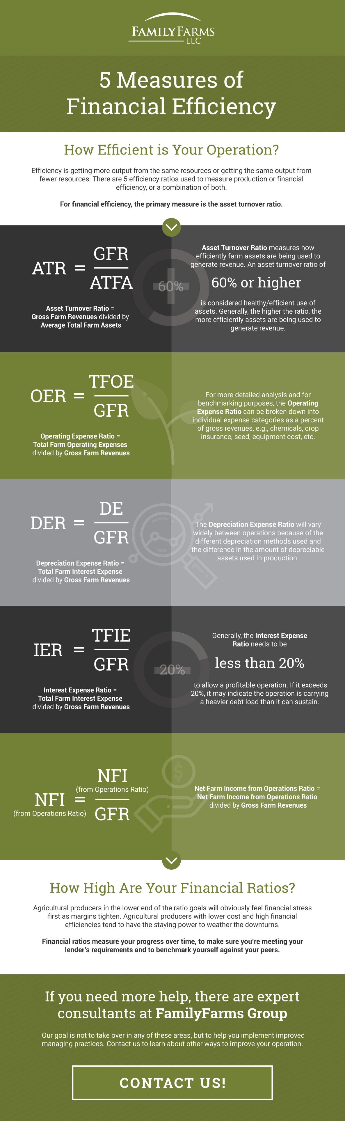 5-Measures-of-Financial-Efficiency